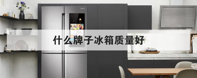 什么牌子冰箱质量好