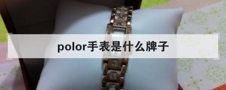 polor手表是什么牌子
